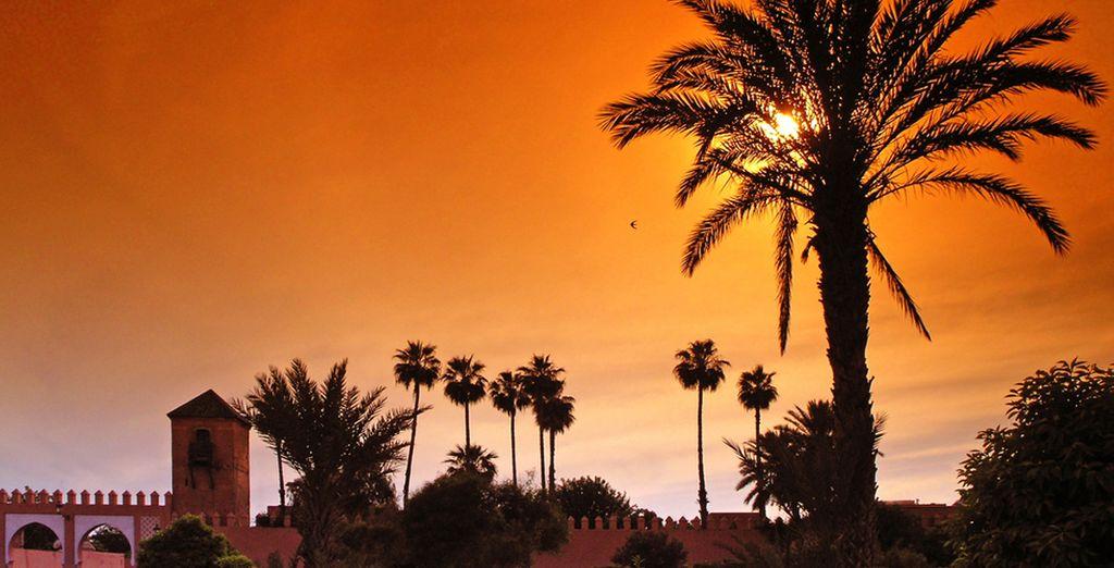 Het prachtige Marokko wacht op u...