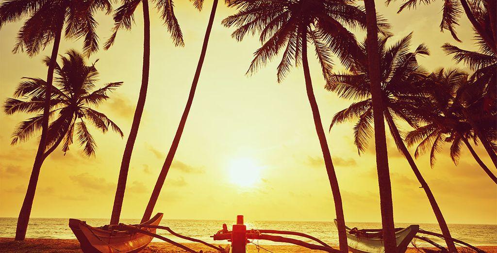 Bent u klaar voor een onvergetelijke vakantie?
