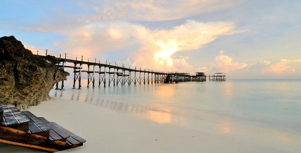 De zaligheid van het strand van Zanzibar