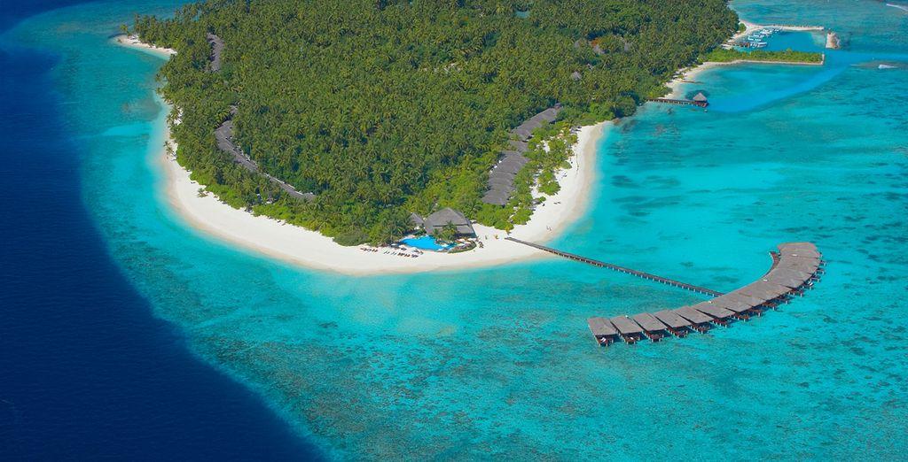 Geniet van een eiland in het paradijs