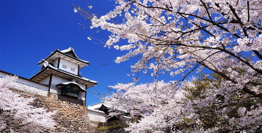 Kanazawa, de parel van de Japanse Alpen