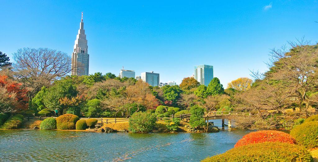 We nemen u mee naar de beste Japanse steden