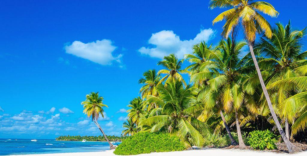 Voor een paradijselijke vakantie