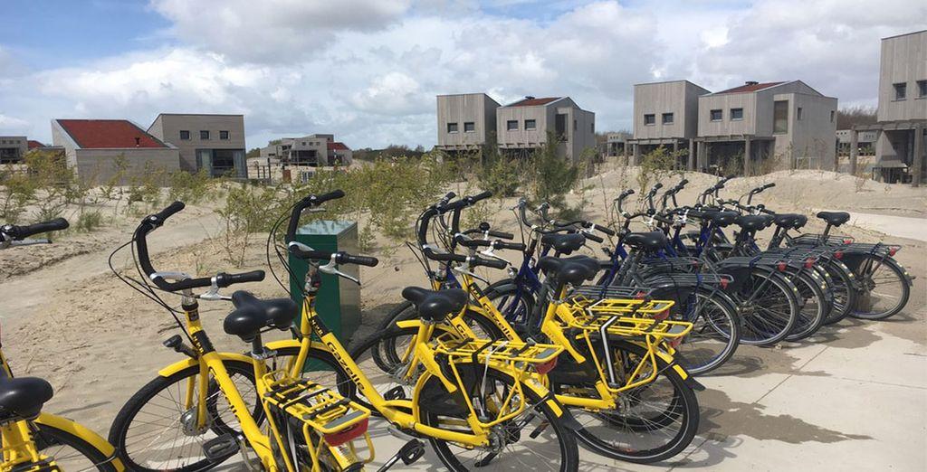 Huur een fiets en ontdek de omgeving!