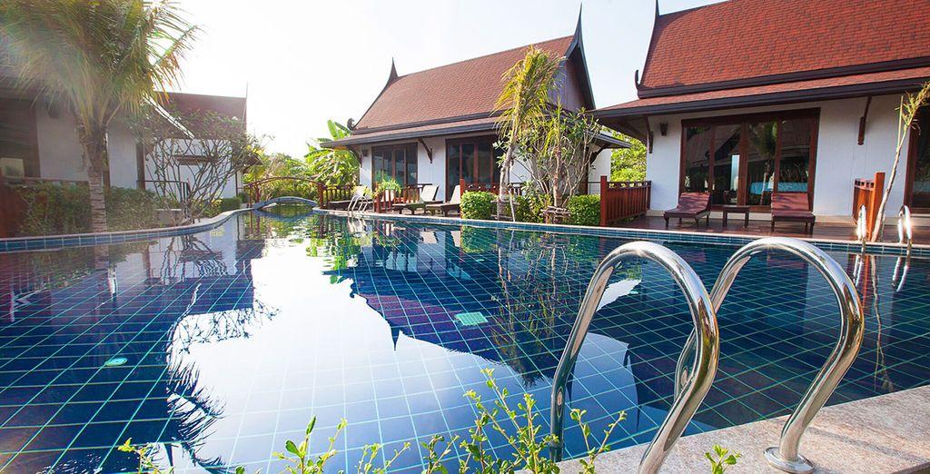 Duik direct vanuit uw villa in het zwembad