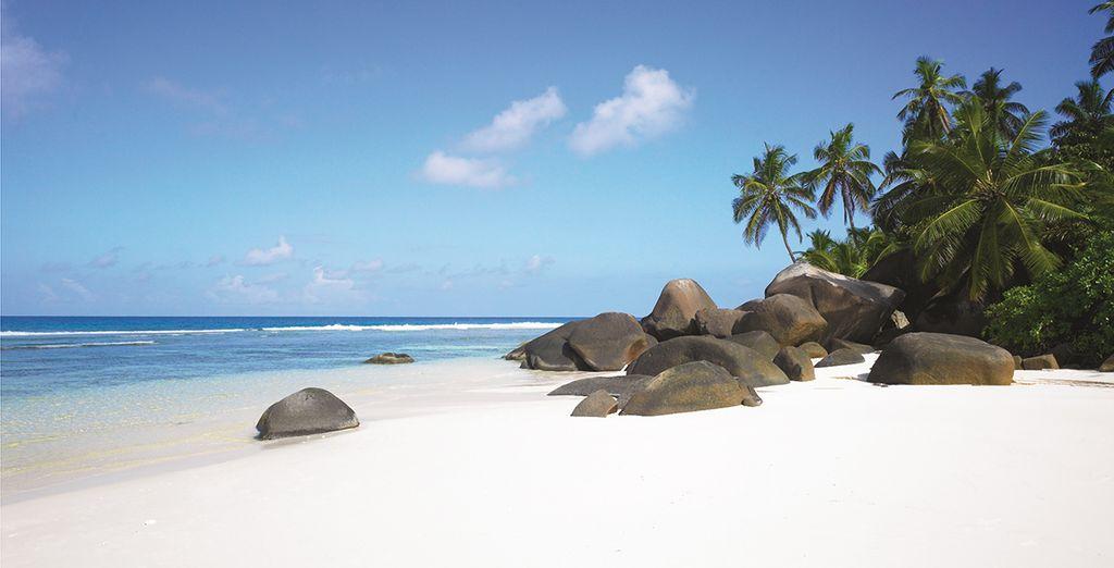 Aan het paradijselijke strand van het eiland Silhouette