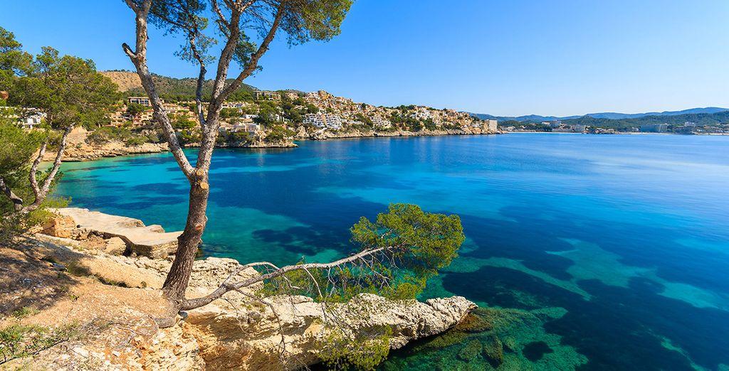 Trakteer uzelf op één van de mooiste baaien van de Middellandse Zee!