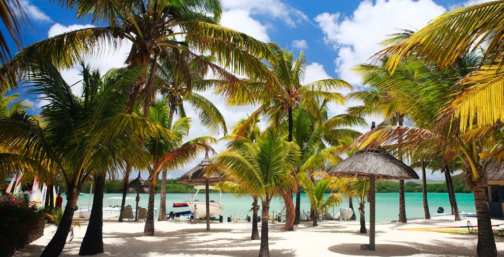 Palmbomen, witte zandstranden & kristalhelder water