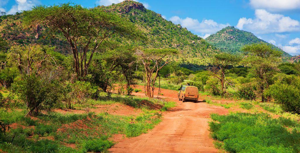 U zult een onvergetelijke safari gaan maken