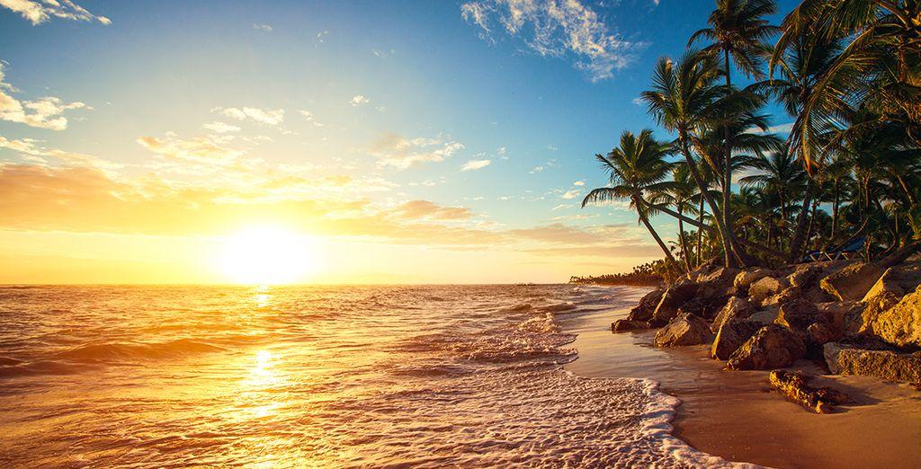 Gelegen in het idyllische Punta Cana!