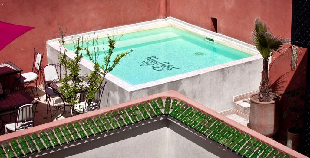 En geniet van het verwarmde zwembad