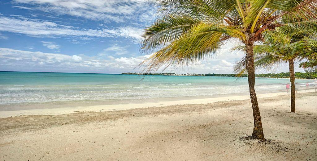 Er staat u een onvergetelijk verblijf te wachten op dit exotische eiland