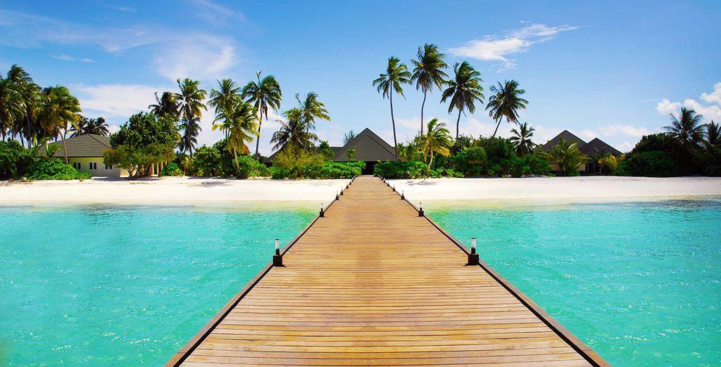Op naar de Malediven!