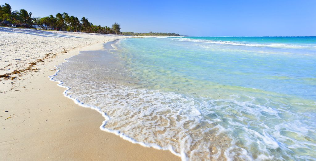 Uw begint uw reis aan de stranden van Diani Beach