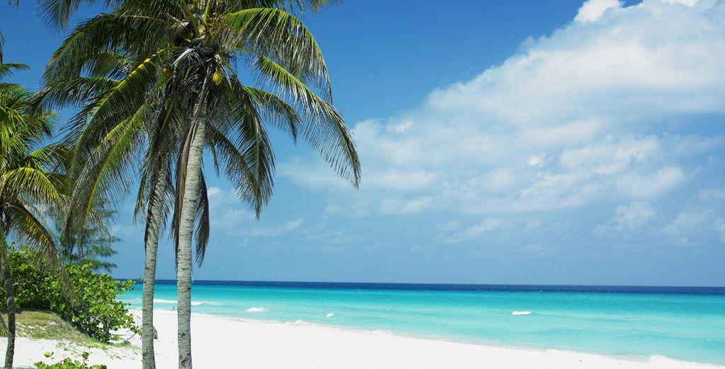 En de stranden van Varadero