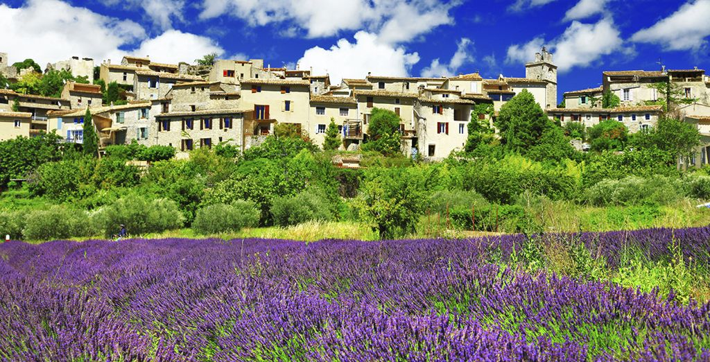 Amongst the lavender fields of Provence