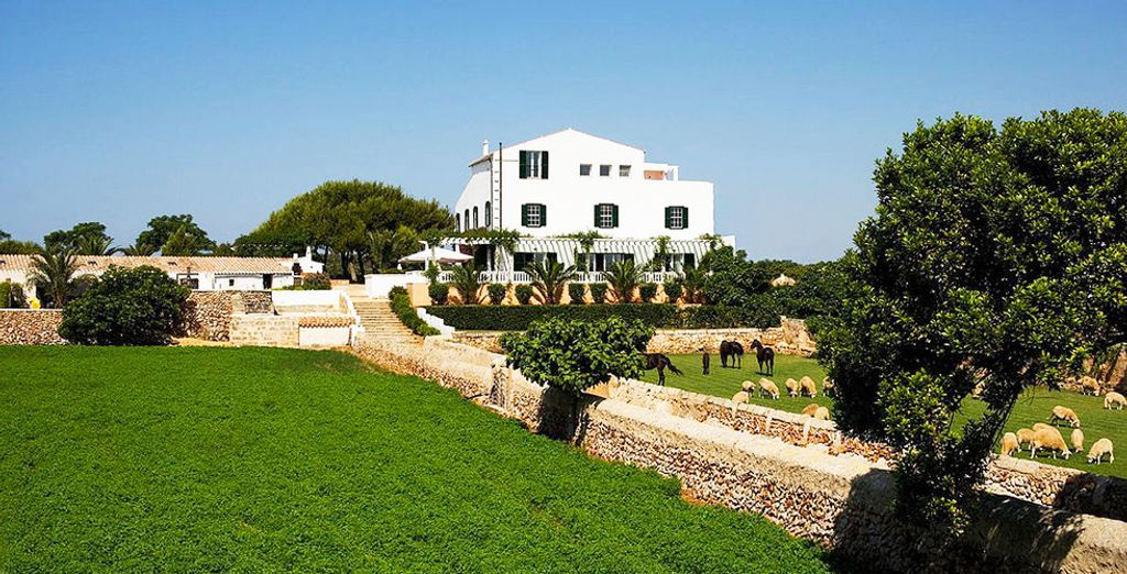 Located within 12 hectares of lush surroundings