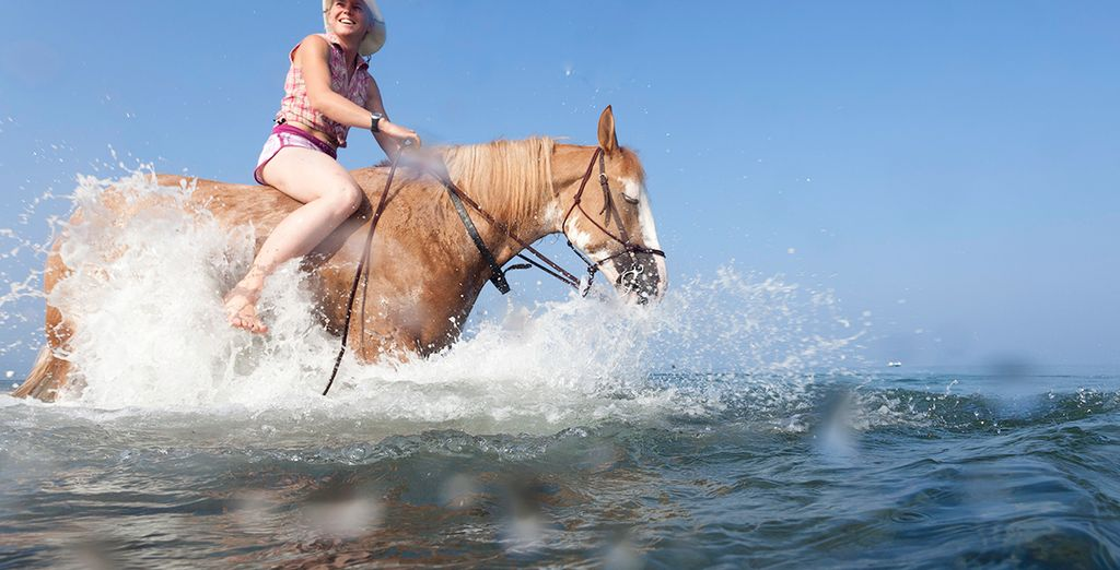 Begin your day with a horse trek on the beach or in the forest