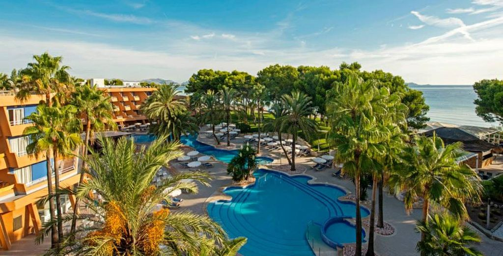 Discover a stunning resort