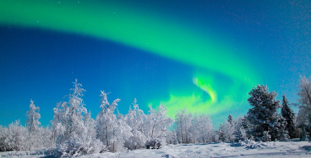 Experience the majesty of the Northern Lights