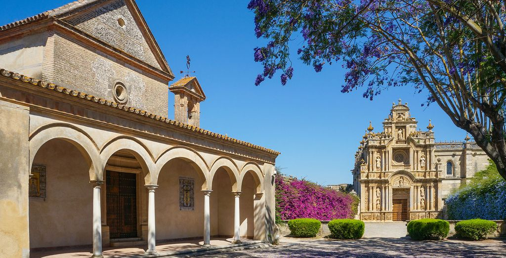 Venture out to explore the history and culture of Jerez