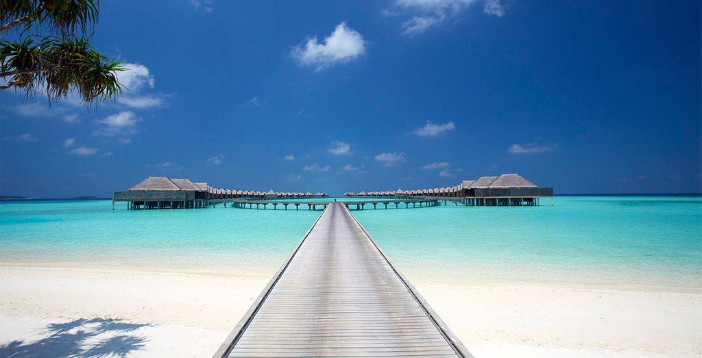 Welcome to Anantara Kihavah Maldives Villas
