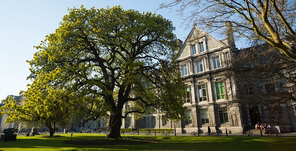 Stroll through the hallowed grounds of Trinity College