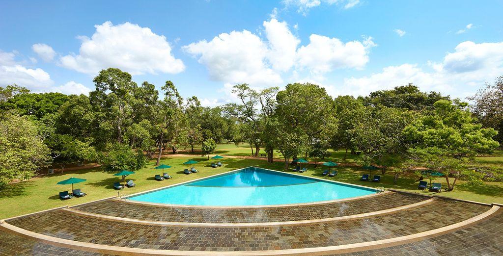 Island Paradise Sri Lanka Tour & Adaaran Select Hudhuranfushi 4* - solo tours abroad
