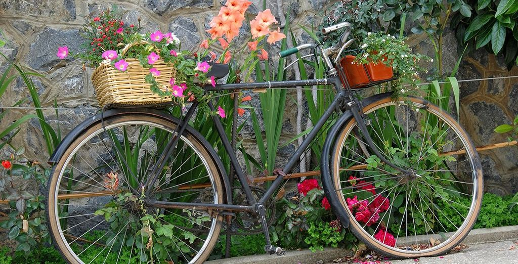 Rent a bike ride and explore the surrounding area