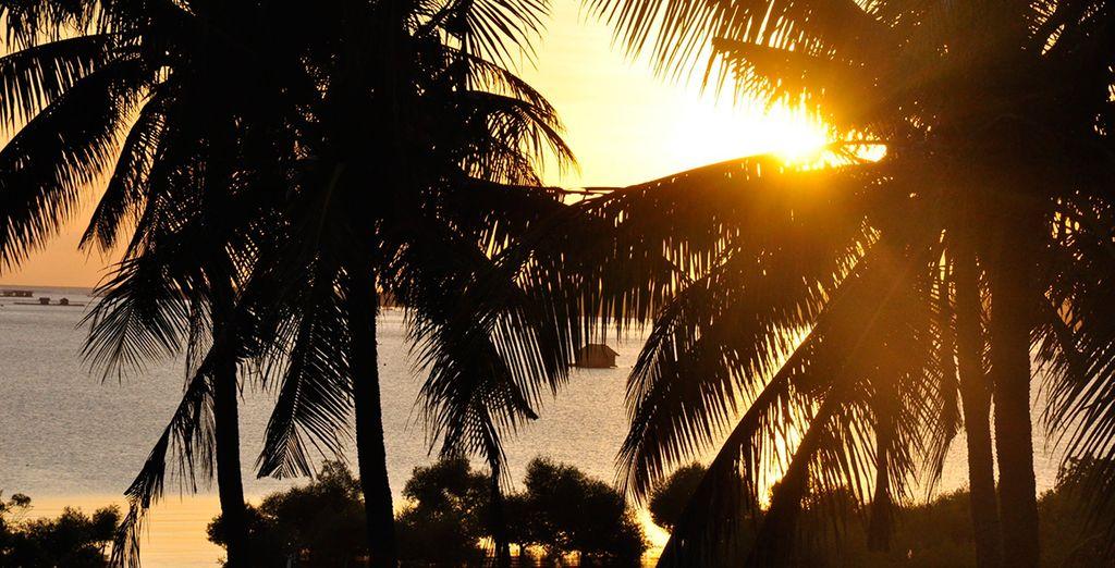 As sun sets on paradise