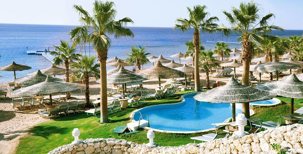 All-Inclusive Sharm Splendour
