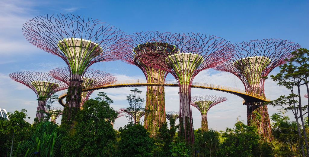 Where you'll find a fascinating meld of nature and modernity