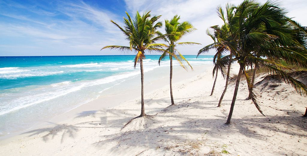 Next, you'll be whisked away to the beautiful beaches of Varadero