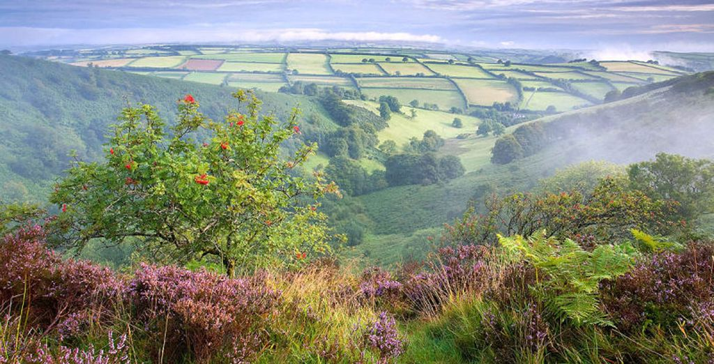 Enjoy long walks and breathe in the fresh country air