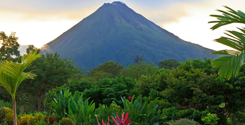 Discover the tropical wonders of Costa Rica