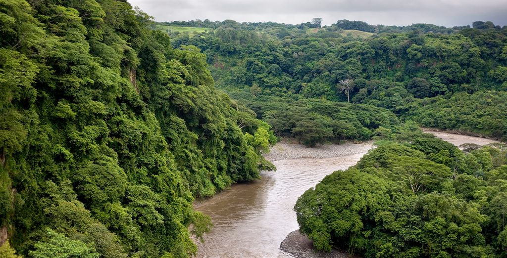 Travel along vast rivers