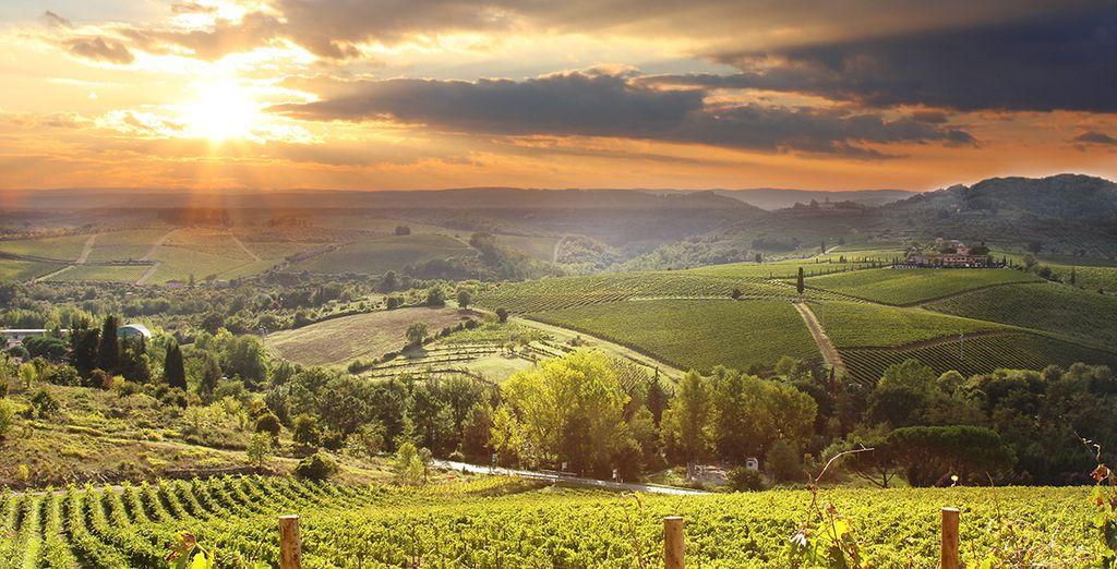 In beautiful Tuscany