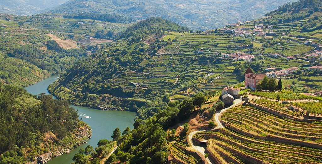 Head further afield to discover the vineyards and scenery of the Duoro valley