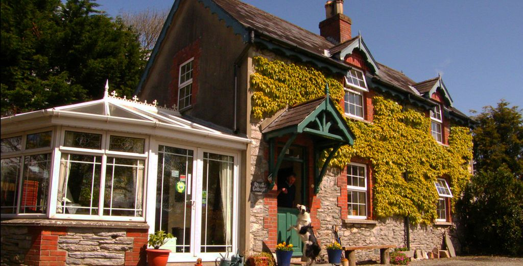 We have included comfortable Bed & Breakfast stays along the way (druid cottage pictured)