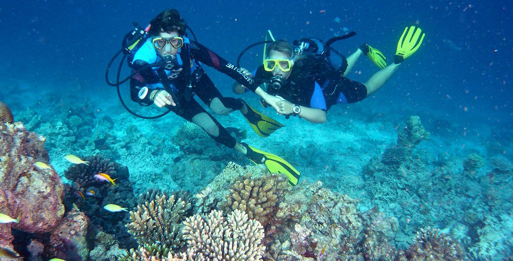 Or diving amongst the colourful coral