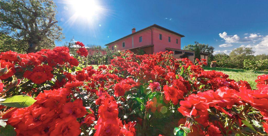 Welcome to the enchanting Relais de Campiglioni