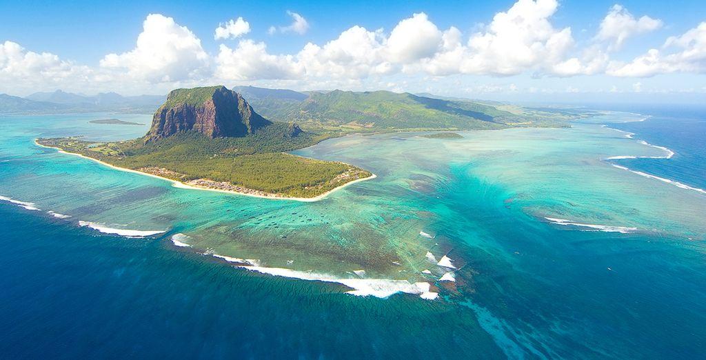 Explore the amazing marine life of the Indian Ocean
