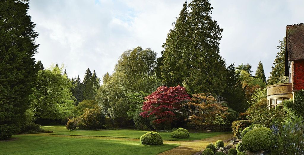 Stroll through the hotel's well-maintained grounds