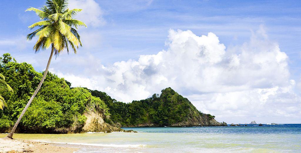 Lush Caribbean Coastline - Magdalena Grand Beach Resort 4* Tobago