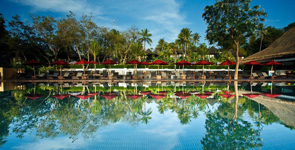 Presenting... The Vijitt Resort