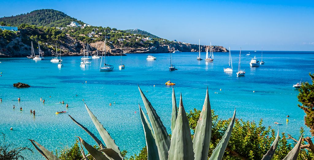 Your destinations could include glamorous Ibiza