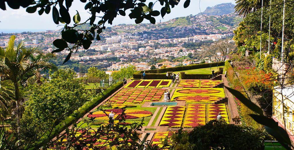 Dramatic colour and year-round sunshine, make Madeira your next stop - Quintinha de São João 5* Funchal