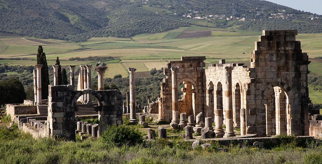 You'll also visit sights such as Volubilis, founded in pre-Roman times