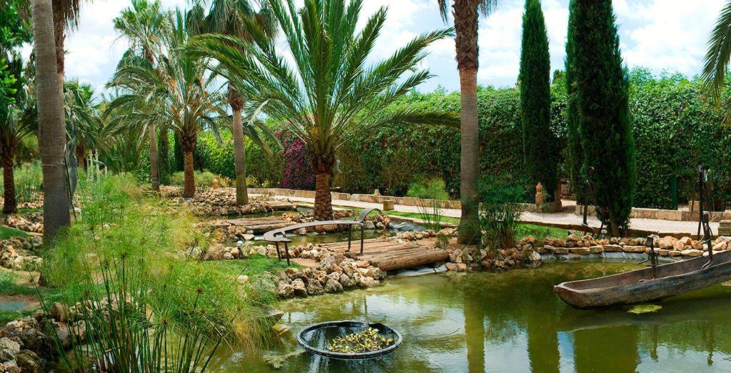Set amongst lush greenery