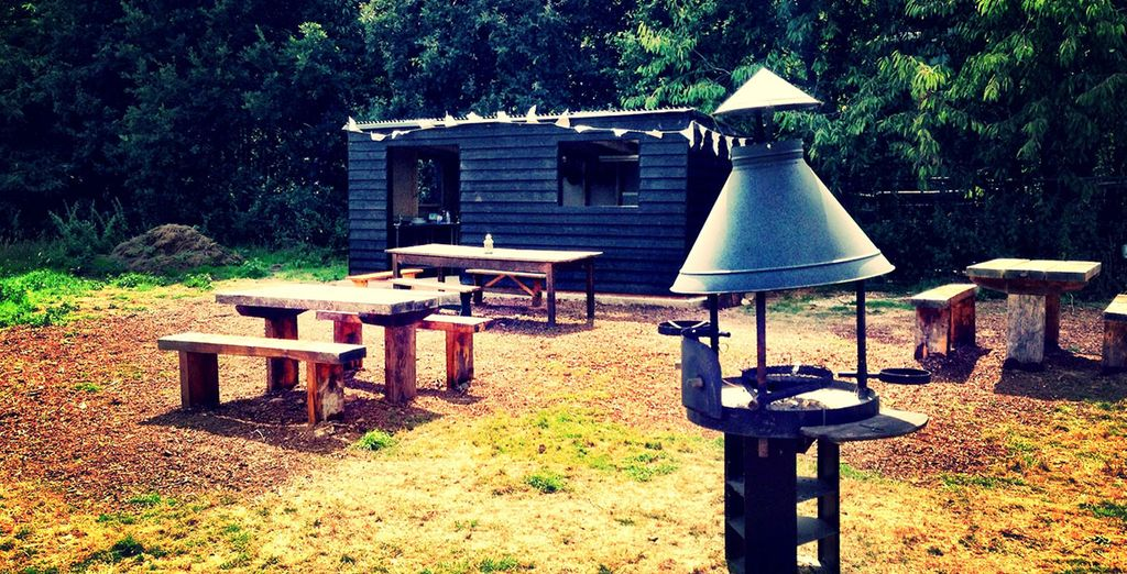 Head to a luxurious camping site